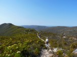 Hiking through the fynbos