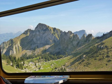 A train with a view