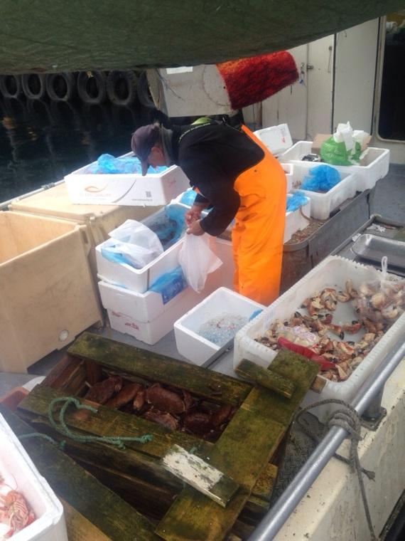 Stavanger seafood