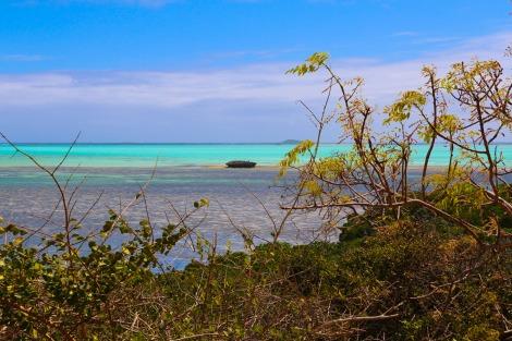 Emerald Sea-6