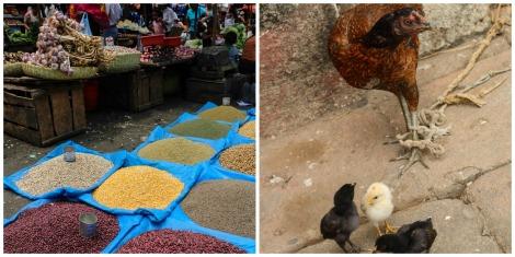 Market Tana